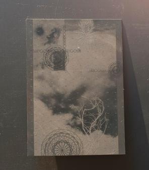 Pirate Passport (plate sky)