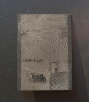 Pirate Passport (plate desert)